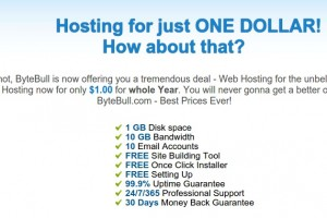ByteBull – One Dollar Web Hosting