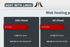 HostWithLinux – 3GB RAM OpenVZ Special VPS in Los Angeles only $2/month