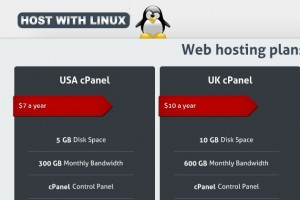 HostWithLinux – Hong Kong VPS start from 2 USD per month