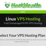 HostMantis – 70% Off KVM VPS with 1GB RAM / $4.48/month / Daily Backups