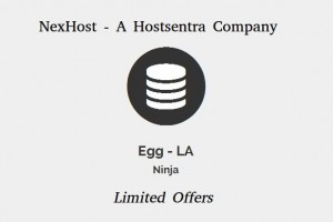 NexHost Egg – Cheapest KVM VPS 256MB RAM from $3.5 USD Annually