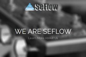 SeFlow – Intel Skylake Server from €29/month – Free DDos Protection & No setup fee