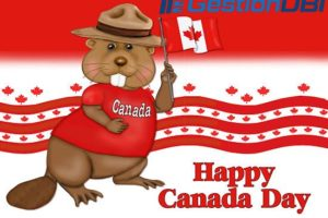 Happy Canada day! GestionDBI offer 50% OFF OpenVZ VPS