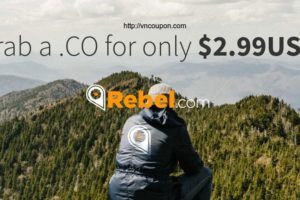 Rebel-CO-Domain-2-99-USD-FIrst-Year-in-VNCoupon