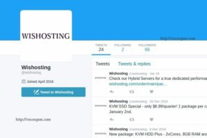 Wishosting – Special OpenVZ, KVM VPS offers from $2.99/Year – Bitcoin Payment