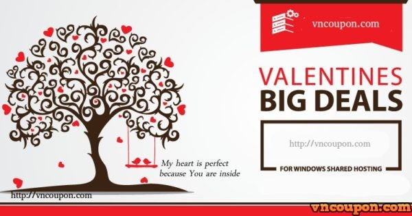 VPS Hosting Offers – Valentine's day special with huge discounts