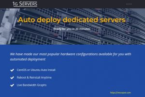 [Valentines Day 2019] 1GServers.com – Auto deploy dedicated servers only $39/month