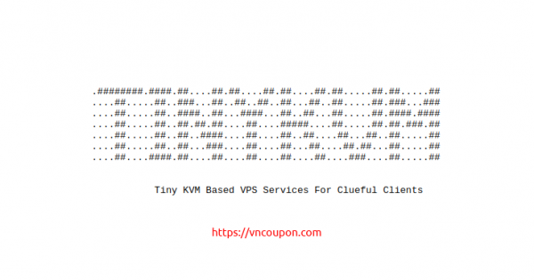 TinyKVM – Special KVM VPS only $15/year in Dallas & Los Angeles