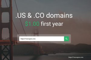 StableHost Coupon & Promo Codes in July 2020 – US & CO Domains only $1.00 first year!