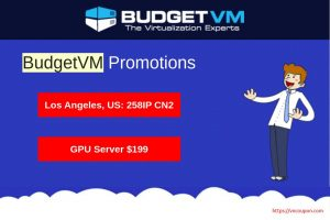 [August Promotions] BudgetVM –  Dedicated Servers from $44/month