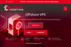 LyraHosting Offshore VPS Coupon – 35% One Time Discount