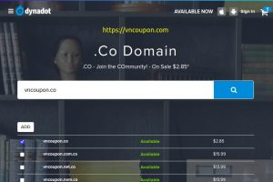 [Flash Sale] Dynadot – Register your new .CO domain names for only $2.85!