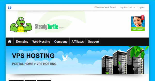SteadyTurtle – DDoS Protected KVM VPS from $7/month