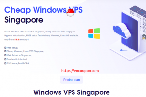 VPSServerUSA – Cheap Singapore Windows VPS Offers from $8/month – Bandwidth Unlimited | SSD Storage